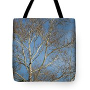 Summer Sky Winter Day Tote Bag