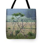 Summer Sumac Tote Bag