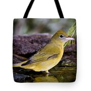 Summer Tanager Female In Water Tote Bag
