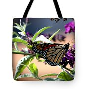 Summer Time Beauty Tote Bag