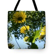 Summer Viewpoint Tote Bag