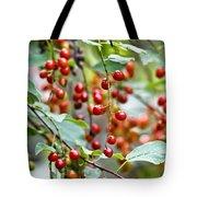 Summer Wild Berries Tote Bag