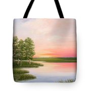 Summers Best Day Tote Bag