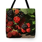 Summer's Bounty Tote Bag