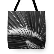 Summers Fan Tote Bag