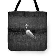 Summer's Night Egret Tote Bag