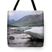 Summertime Ice Tote Bag