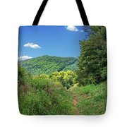 Summertime Trail At The Gap Tote Bag