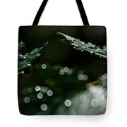Sun After The Rain Tote Bag