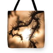 Sun And Frost Tote Bag