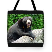 Sun Bear - 09515-1 Tote Bag