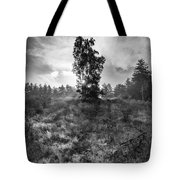 Sun Behind The Tree Tote Bag