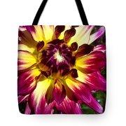 Sun Burst Purple Dahlia Tote Bag