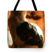 Sun Cat Tote Bag
