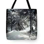 Sun Dappled Snow Tote Bag