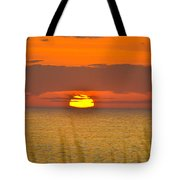 Sun Delight  Tote Bag