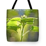 Sun Drenched Sunflower With Bible Verse Tote Bag by Debbie Portwood