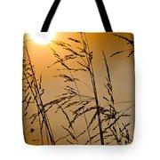Sun Flood Tote Bag