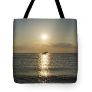 Sun Going Down In Cape May Tote Bag