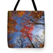Sun In Fall Forest Canopy  Tote Bag