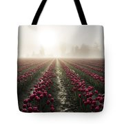 Sun In Fog And Tulips Tote Bag