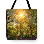 Sun In The Autumn Forest Tote Bag