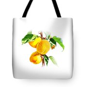 Sun Kissed Apricots Tote Bag