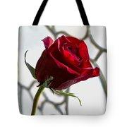 Sun Kissed Rose Tote Bag