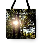 Sun Kissed Trees Tote Bag
