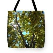 Sun Leaves Tote Bag