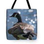 Sun Light Dancing On The Water Tote Bag
