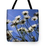 Sun Lit Daisies Tote Bag