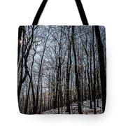Sun Lit Frozen Rain 3 Tote Bag