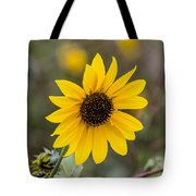 Sun Of A Cloudy Day Tote Bag