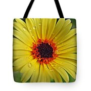 Sun On A Rainy Day Tote Bag