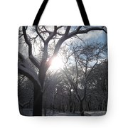 Sun Over The Park Tote Bag
