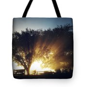 Sun Rays Tote Bag by Les Cunliffe