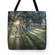 Sun Rays  On A Hillside Tote Bag