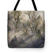 Sun Rays Through The Morning Mist Tote Bag