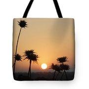 Sun Rise On Bethsaida Tote Bag