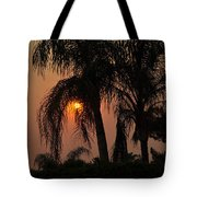 Sun Setting Behind The Queen Palm Covered In Smoke Tote Bag