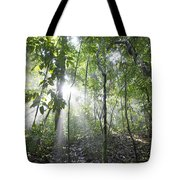Sun Shining In Tropical Rainforest Tote Bag