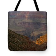 Sun Shining On The Canyons Tote Bag