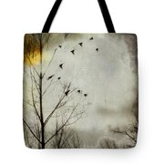 The Sun Splashed Unto A Gray Day Tote Bag
