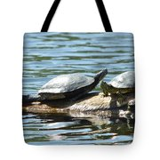 Sun Stretching Turtle And Youngster Tote Bag
