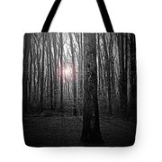 Sun Thru The Trees At Twilight Tote Bag
