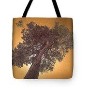 Sun Tree Tote Bag