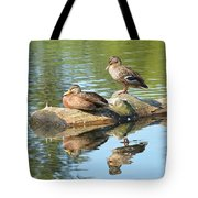 Sunbathing Mallards Reflecting Tote Bag