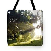 Sunbeam Landscape Tote Bag