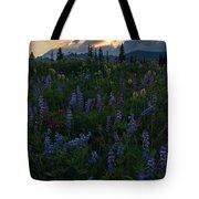 Sunbeams Over Rainier Tote Bag